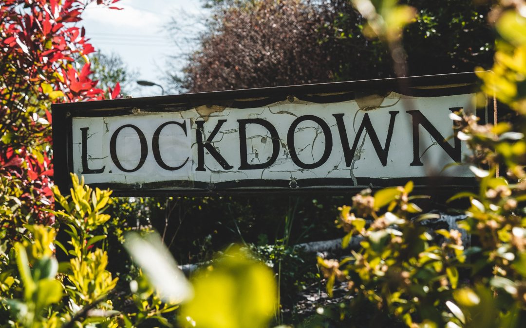 The Lockdown Diaries – Demelza